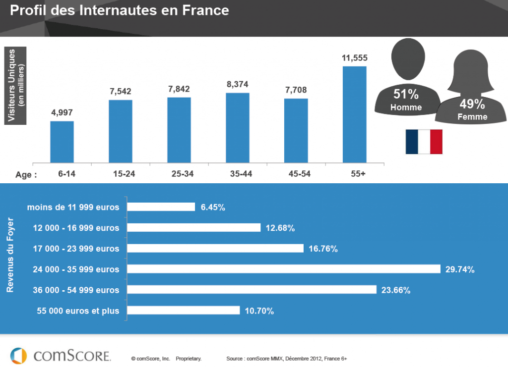 profil des internautes en france 2013 - optimisation-conversion